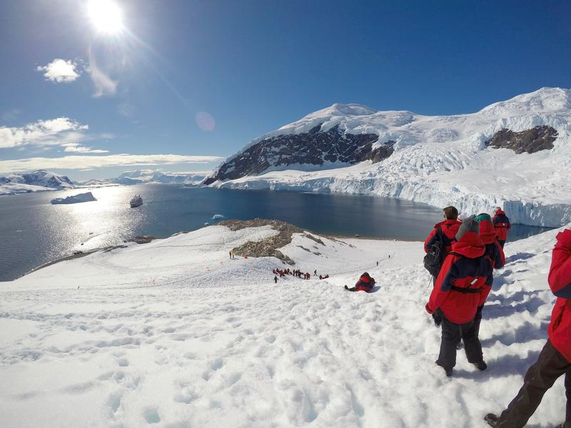 Taking the kids to antarctica travel agent central for How can i travel to antarctica