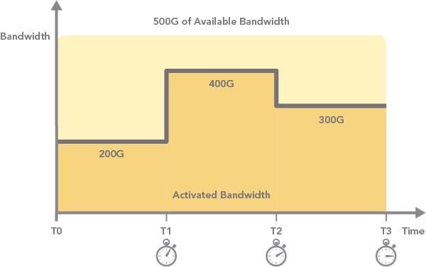 instant bandwidth (Infinera)