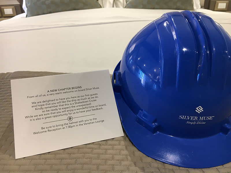 Media attendees were presented with a special hard hat to celebrate the ship's debut