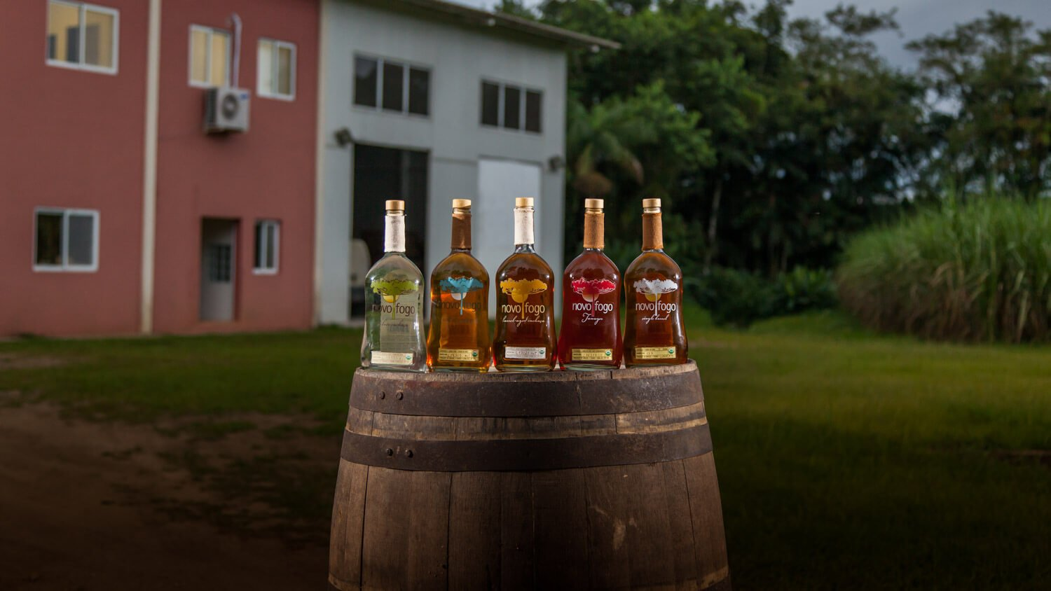 Novo Fogo Cachaça launches distribution in Europe - What's Shakin' week of June 19