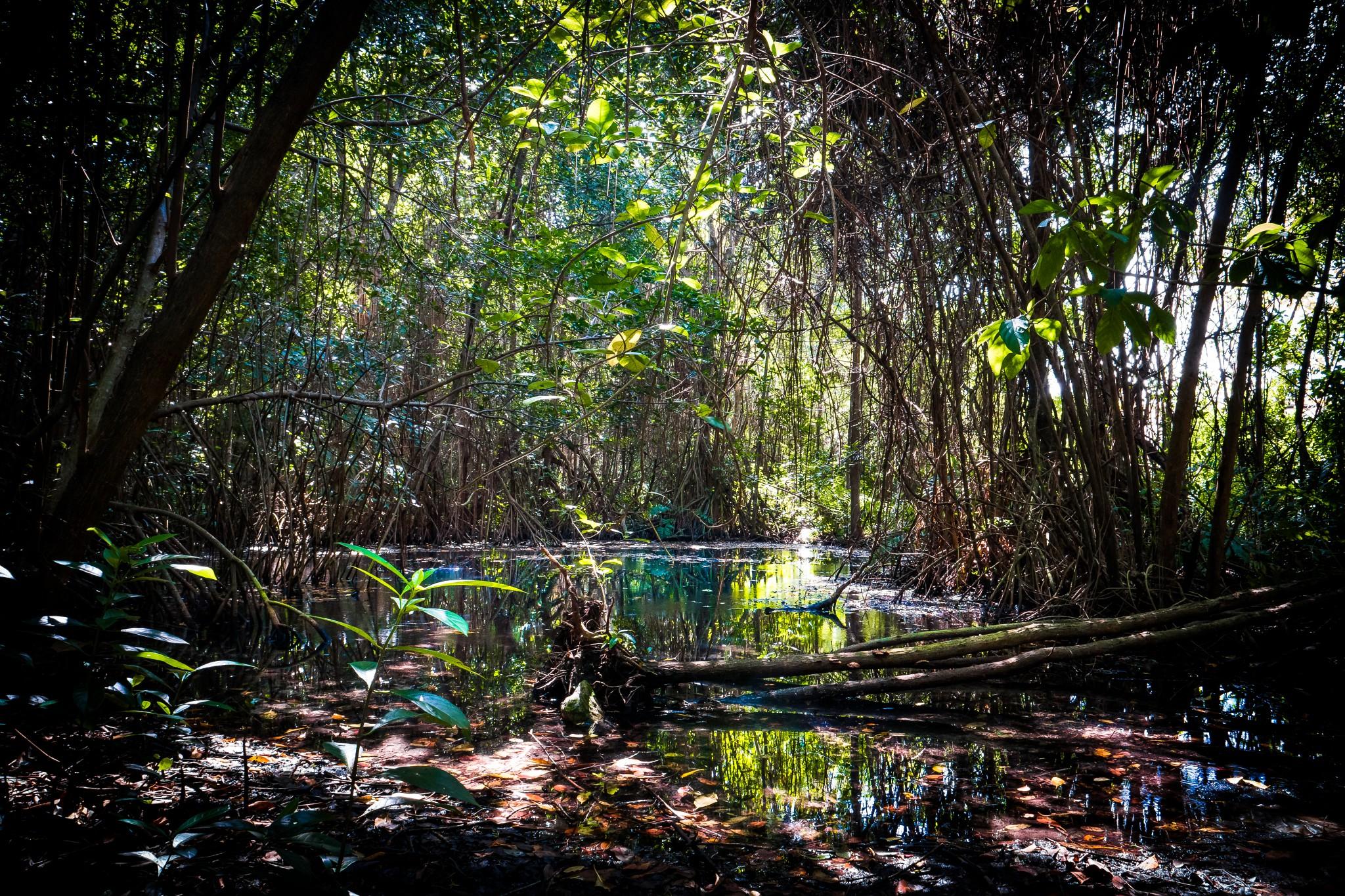 Photography Meets Adventure With New Grand Velas Riviera Maya