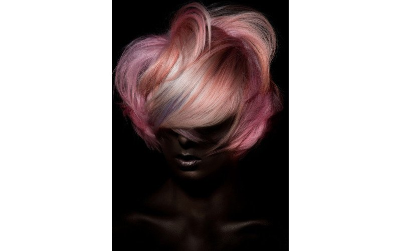 2017 NAHA Hair Color Winner