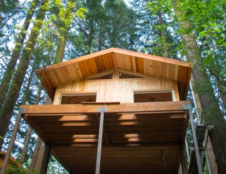 Elevated 15 feet to 20 feet above the ground, the new treehouses will have a rustic design.