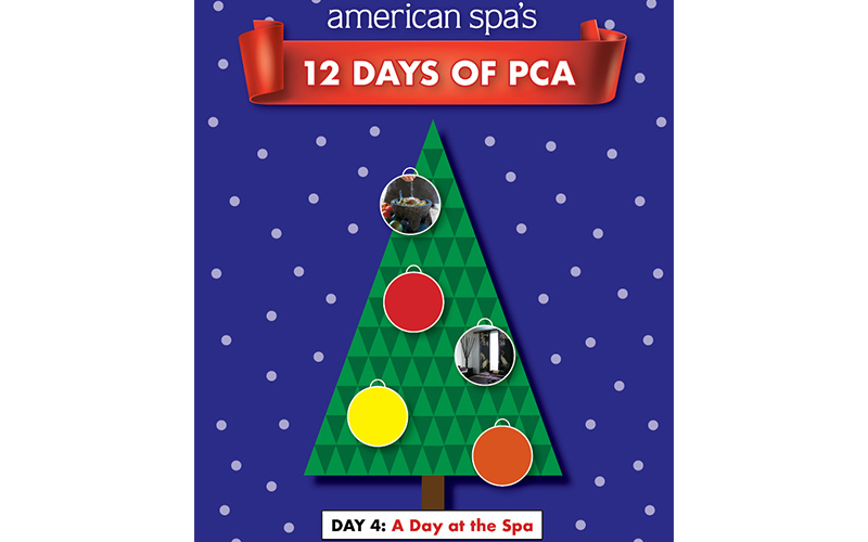 12 Days of PCA Day 4