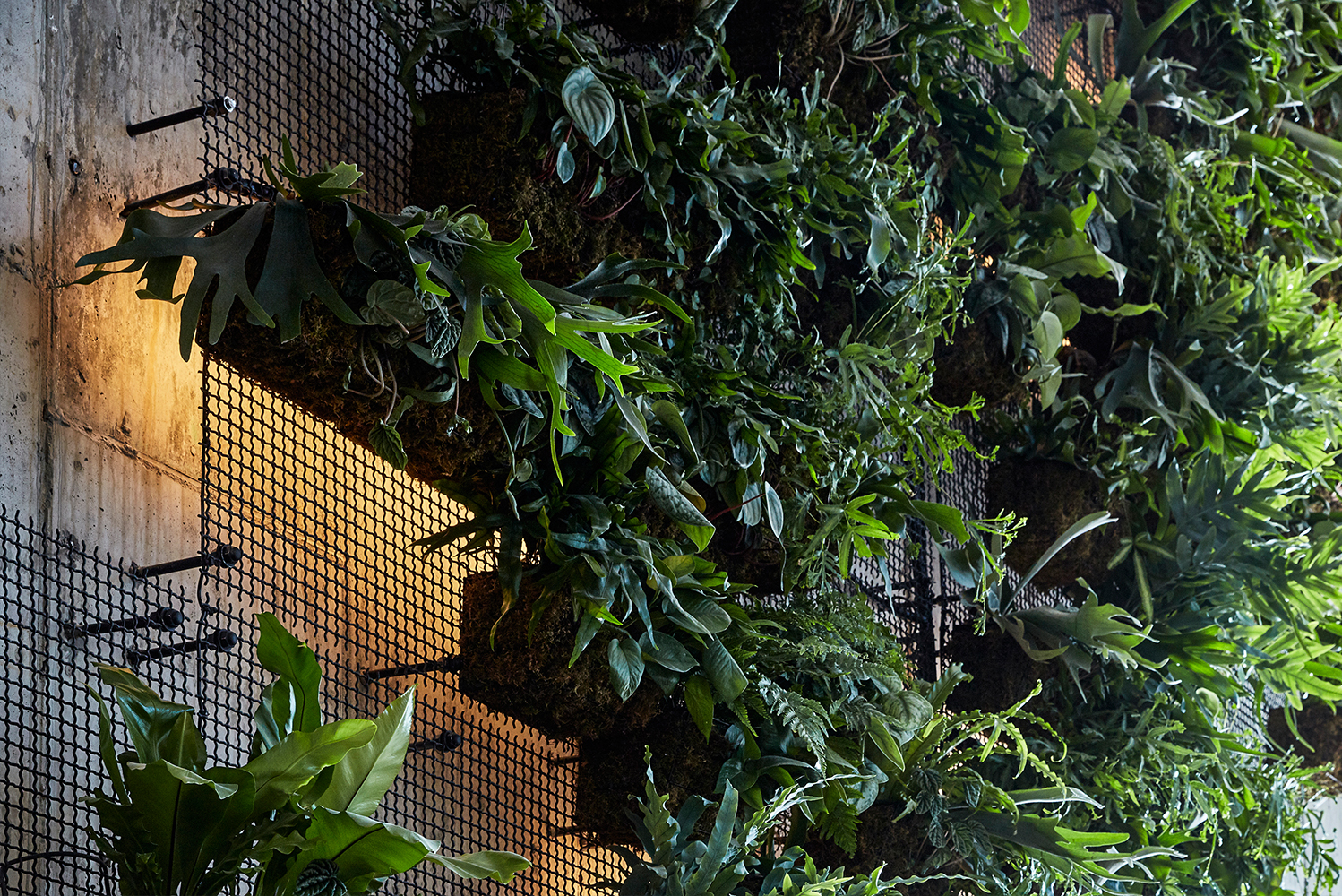 The property has a 25-foot, custom green wall in the lobby made from Banker Wire's wire mesh pattern I-21.