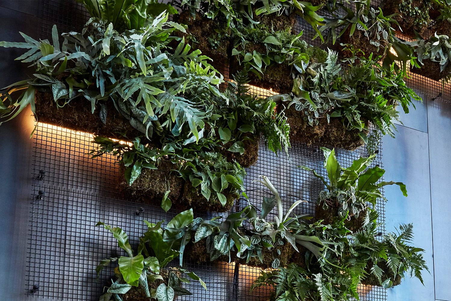 Banker Wire's wire mesh pattern I-21 creates a woven fixture screen and custom welded wire mesh hanging baskets for vegetation.