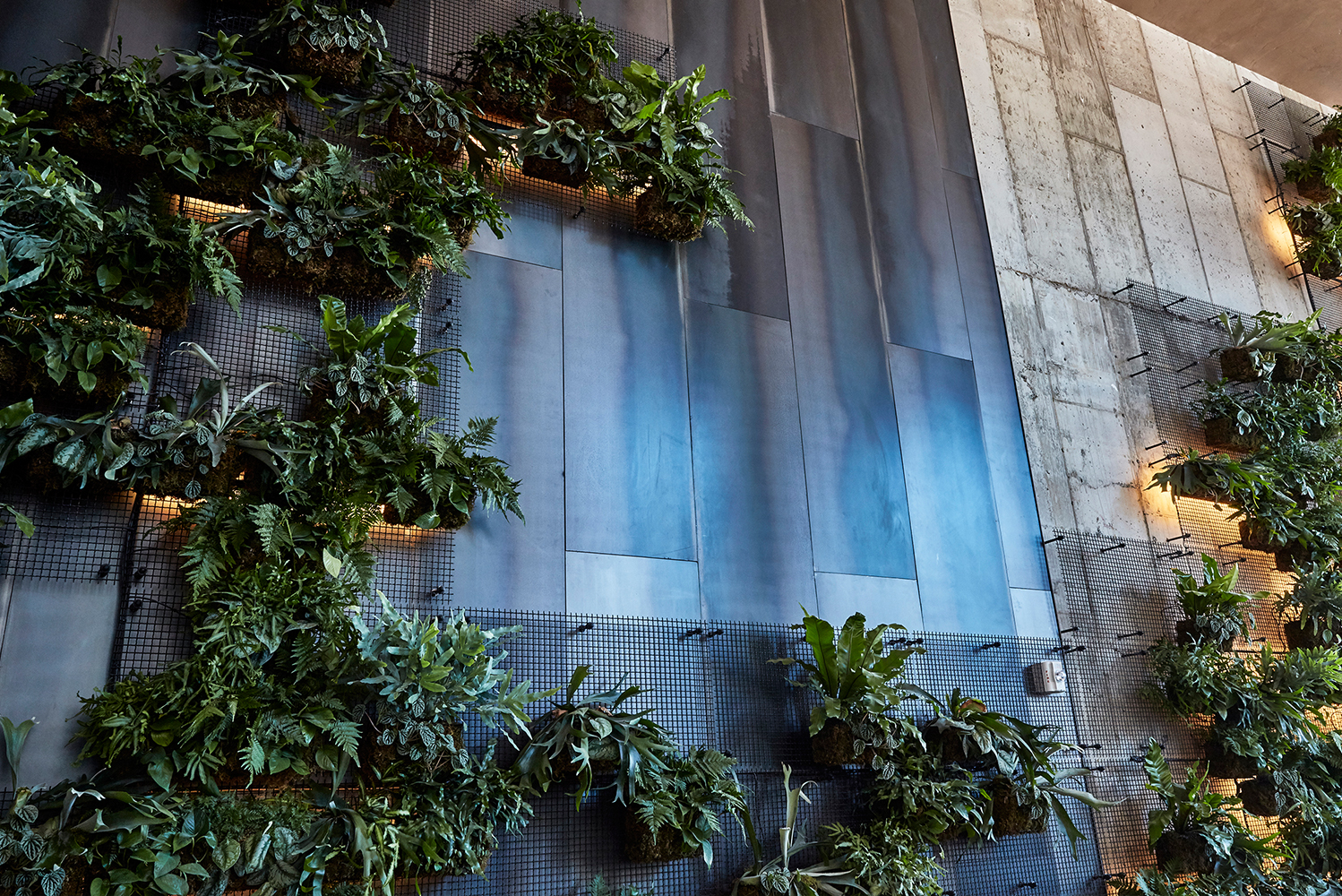 The vertical wall blends industrial elements with natural eslement against a backdrop of concrete and steel.
