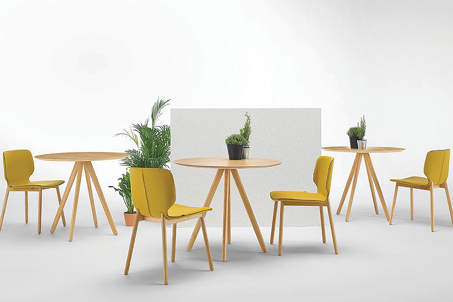 For frames, there are solid legs in beech or oak, while four-legs or a sled base in steel allows the chairs to stack for additional practicality.