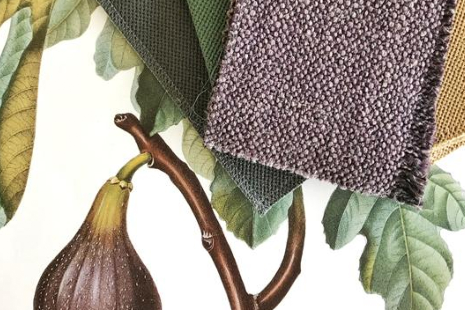 HBF Textiles partnered with textile designer Barbara Barry for a fourth collaboration, creating a fabric collection dedicated to naturally occurring designs.