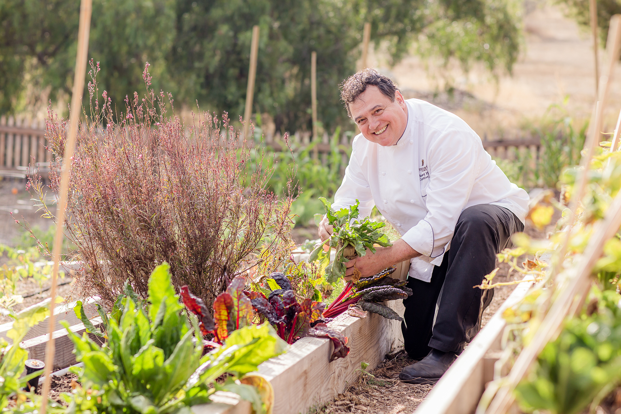 Executive chef Bernard Ibarra at Terranea's Catalina View Gardens.