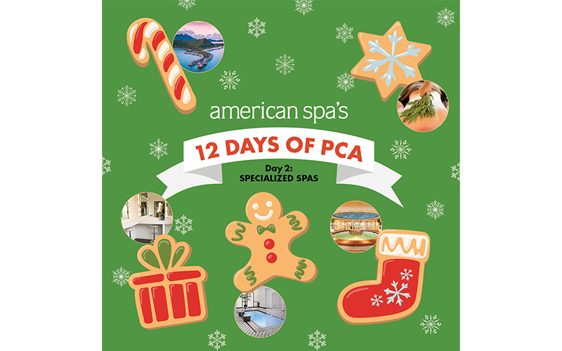 American Spa's 12 Days of PCA Day Two: Specialized Spas