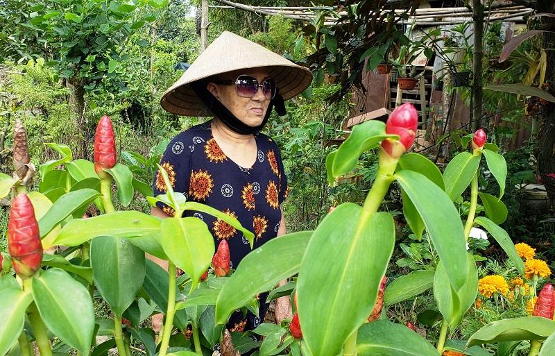 A Vietnamese woman in Hoi An tends her flower garden.