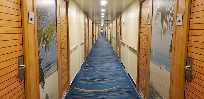 Guest corridors on Carnival Sunrise now have a lighter, brighter island look. Photo by Susan J. Young