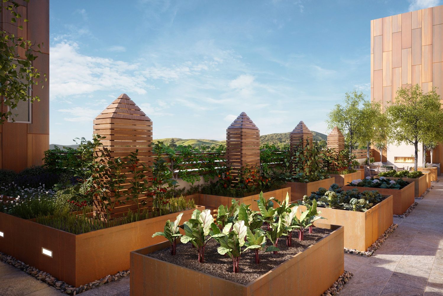 A key sustainable feature of Hotel Cerro is the Edible Garden.