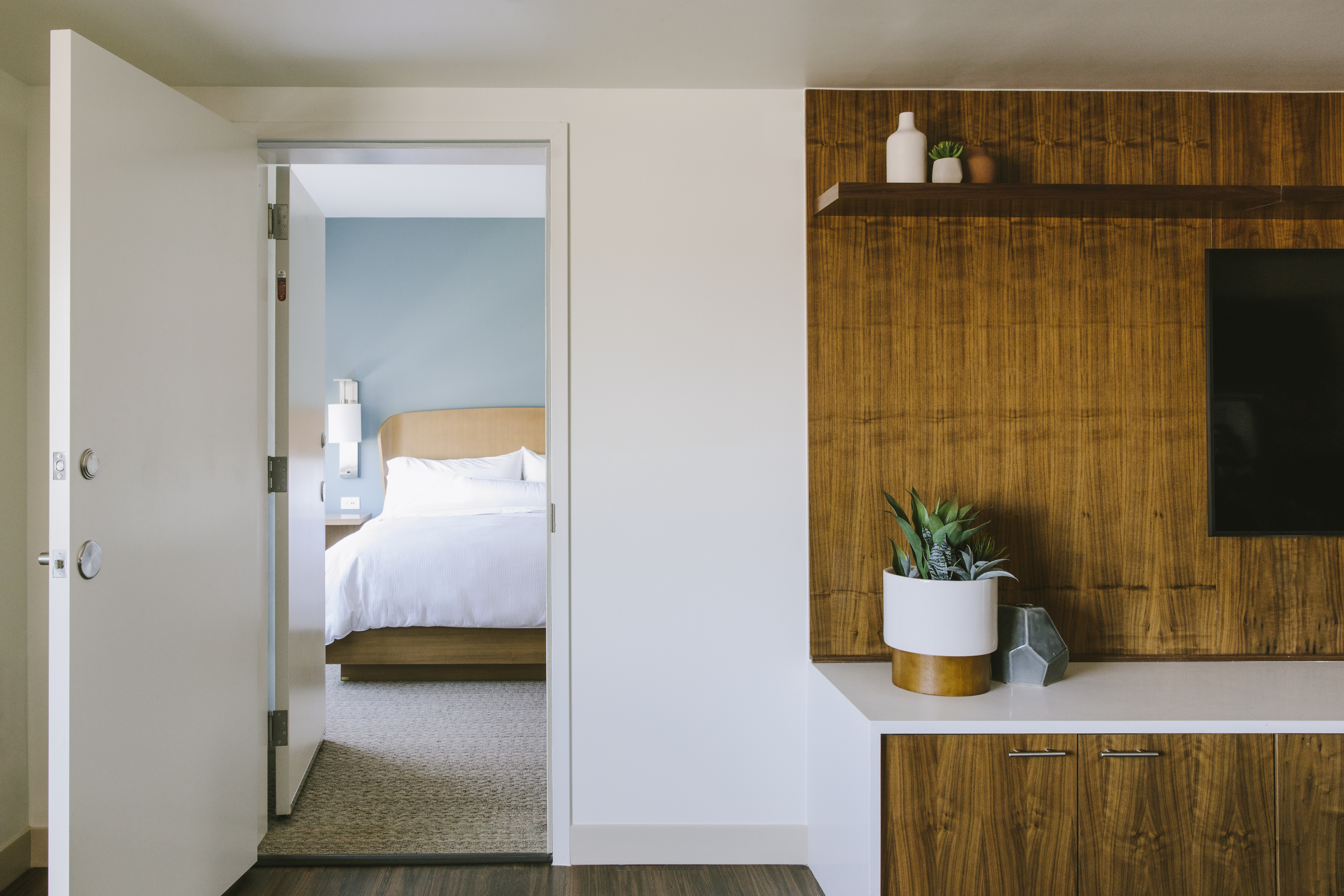 Studio Commons suites have four guestrooms around shared living spaces.