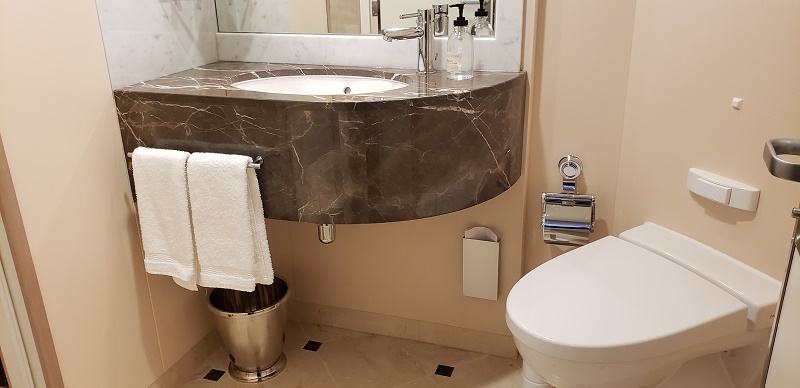 Another bathroom in the Sky Suite. Photo by Susan J. Young