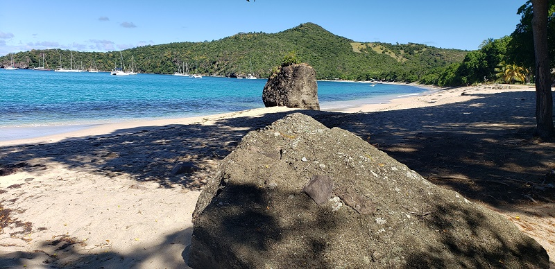 The beach area of Union Island, St. Vincent and the Grenadines. Photo by Susan J. Young