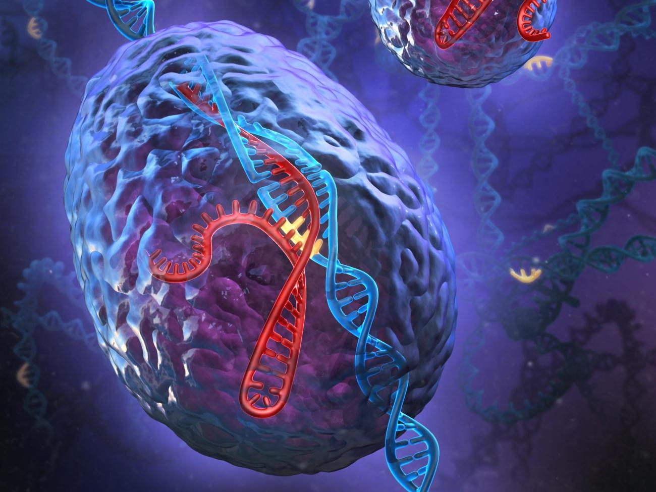 Editing genes with a more precise alternative to CRISPR