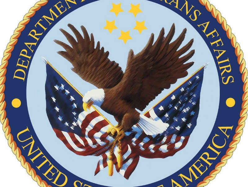 """VA is """"an enormous bureaucracy that is incapable of ... 