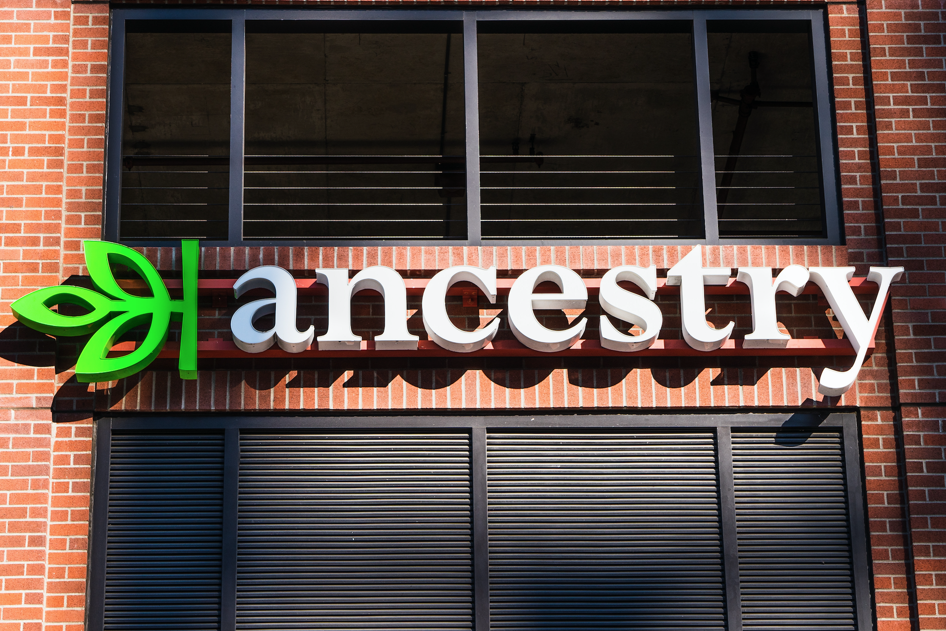 Ancestry Rolls Out More Advanced Dna Testing To Flag Risk Of Heart Disease Breast Cancer Fiercehealthcare