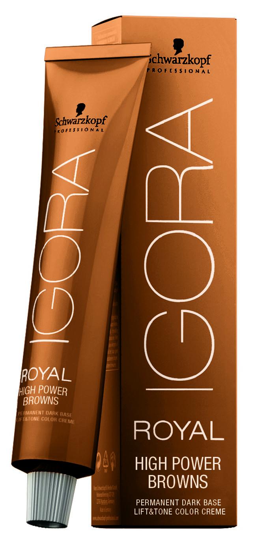 Color alert shades of brunette american salon power brunette nvjuhfo Choice Image