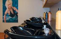 The shampoo bowls