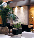 Guests gather for Dtox's Happy Hour Friday events in the spa's center atrium, which features a waterfall 15 feet tall.