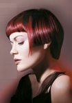 Goldwell Topchic Max Red Series