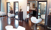 Potted orchids add a natural touch to Salon O in Greenwich, CT.