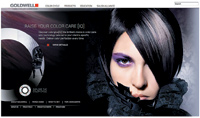 The goldwell.com home page is sleek and functional