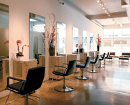 TOM BROPHY SALON in Beverly Hills Offers Healthy Scalp Treatment