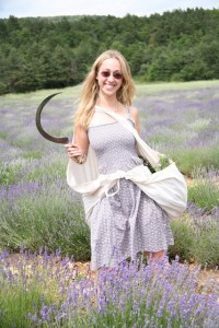 Me harvesting lavender in Vercheny, France