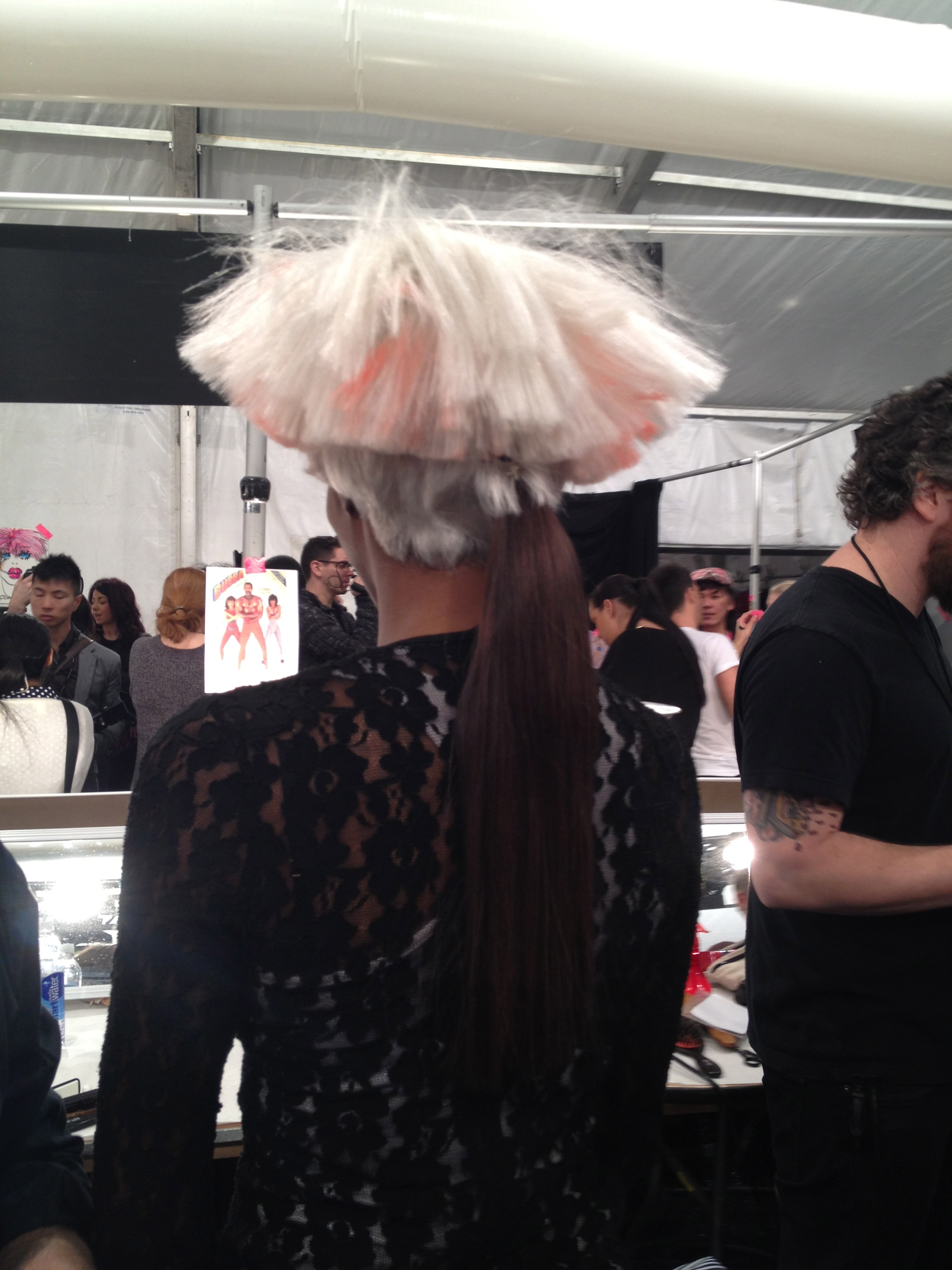 Rear-view of the wig and pony combination.