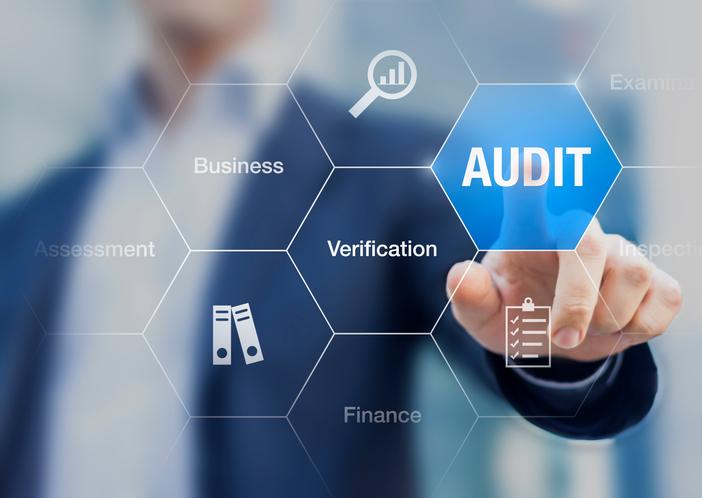 Image result for IT Audit