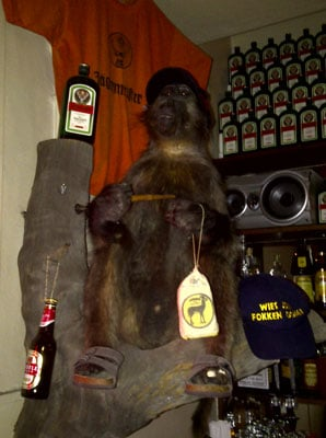 Monkey holding jagermeister
