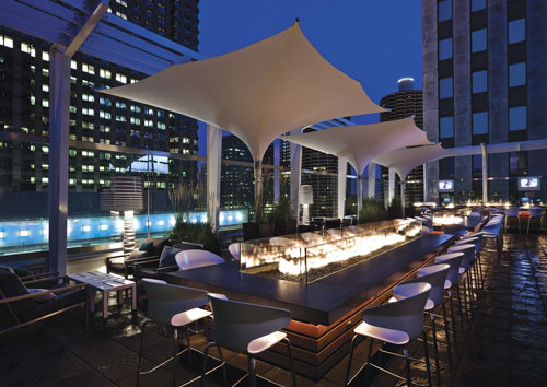 Roof at thewit