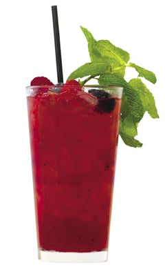 DonQ Mixed Berry Mojito