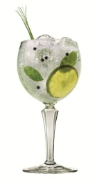 Sapphire Gin and Tonic