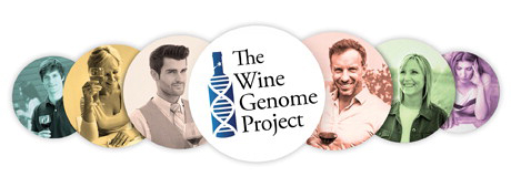 The Wine Genome Project By Constellation Brands