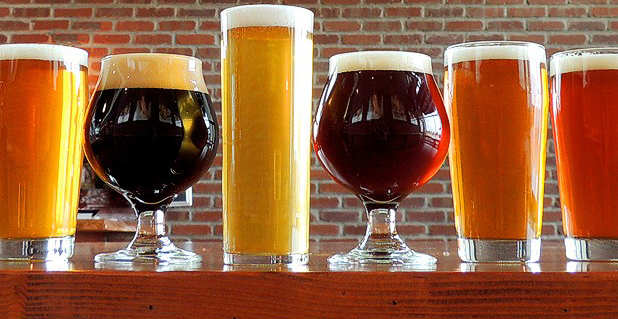 Craft Beer on National Drink a Beer Day