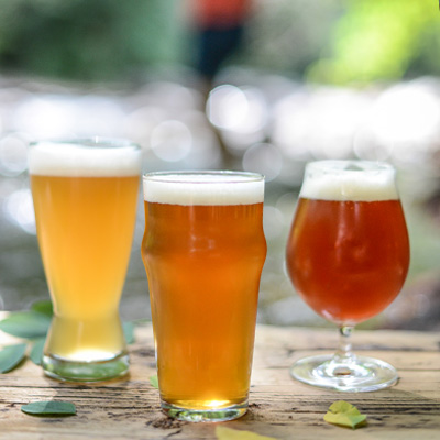 Craft Beer Food Pairing Tips and Tools
