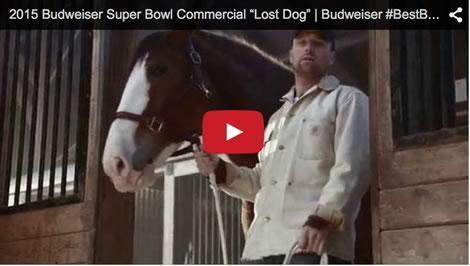 Super bowl anheuser busch releases additional details on bud light budweiser lost dog commercial aloadofball Gallery
