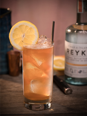 Reyka Roots Collins cocktail recipe - 2016 National Vodka Day recipes