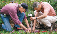 Figure 1. Researchers from NASA/Jet Propulsion Laboratory install a Sensor Web 5.0 pod at the Huntington Botanical Gardens in San Marino, CA