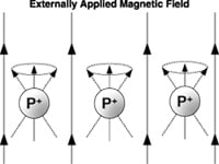 Figure 1. In the process of realigning with an external magnetic field after perturbation by a secondary field, nuclei will precess like toy tops