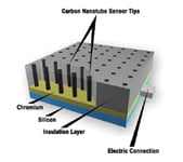 Figure 5. Carbon nanotubes offer specificity and electrical conductivity