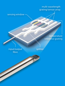Figure 1. A diagram of the silicon chip at the heart of the Ranger Probe