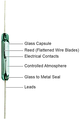 Fig. 1: Components of a reed switch