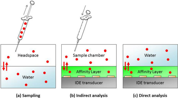 Figure 1:  Schematic overview of sampling from the headspace (a), followed by the indirect analysis using an IDE transducer (b). The system under study (c) represents the direct analysis in the aqueous phase.