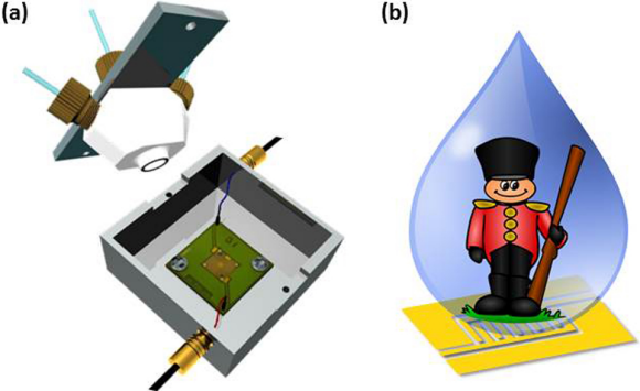 Figure 2: Schematics of the flow cell and cell holder with electrical and flow connections (a) and a cartoon on the topic of water-enhanced guarding (b).